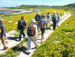 Greater Gansbaai Hiking