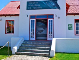 Whale Museums
