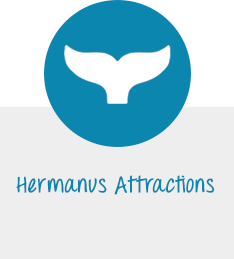 Hermanus Attractions