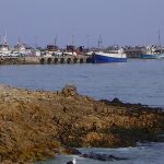 Gansbaai_Harbour_boats