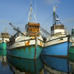Gansbaai_Harbour_boats_02